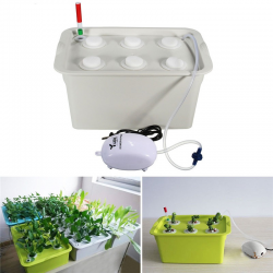 Kit d'hydroculture - 6 plantes